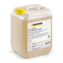 Dry & Ex RM 767, 10 l Karcher 6.295-198.0
